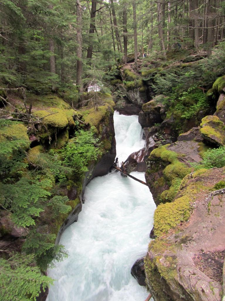 Avalanche Gorge - Glacier National Park