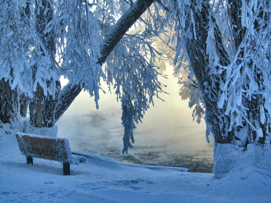 Magic of Winter