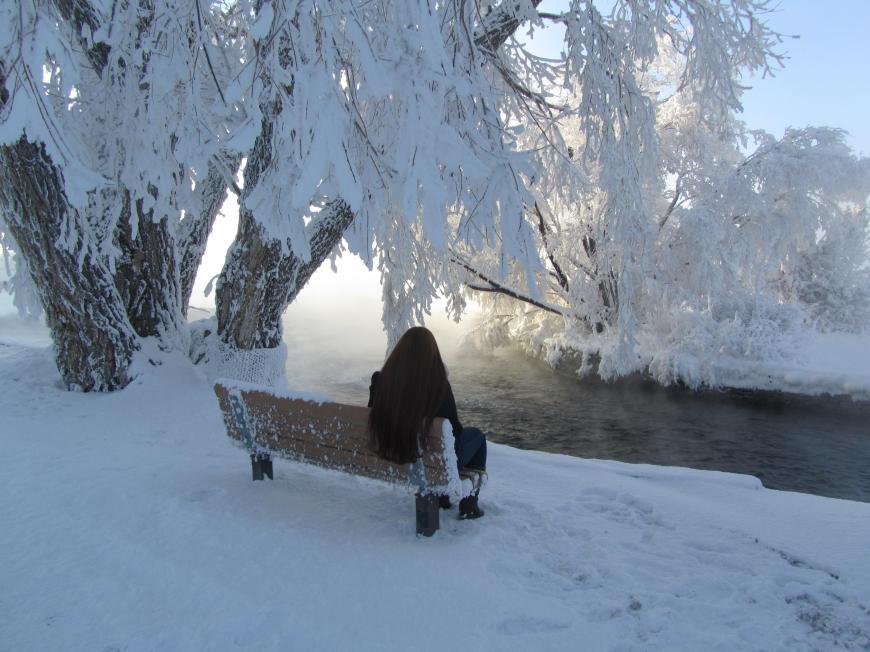Enjoying A Winter Wonderland