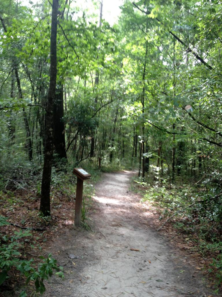 Trail at Wakulla Springs